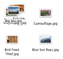 overlapping_filenames