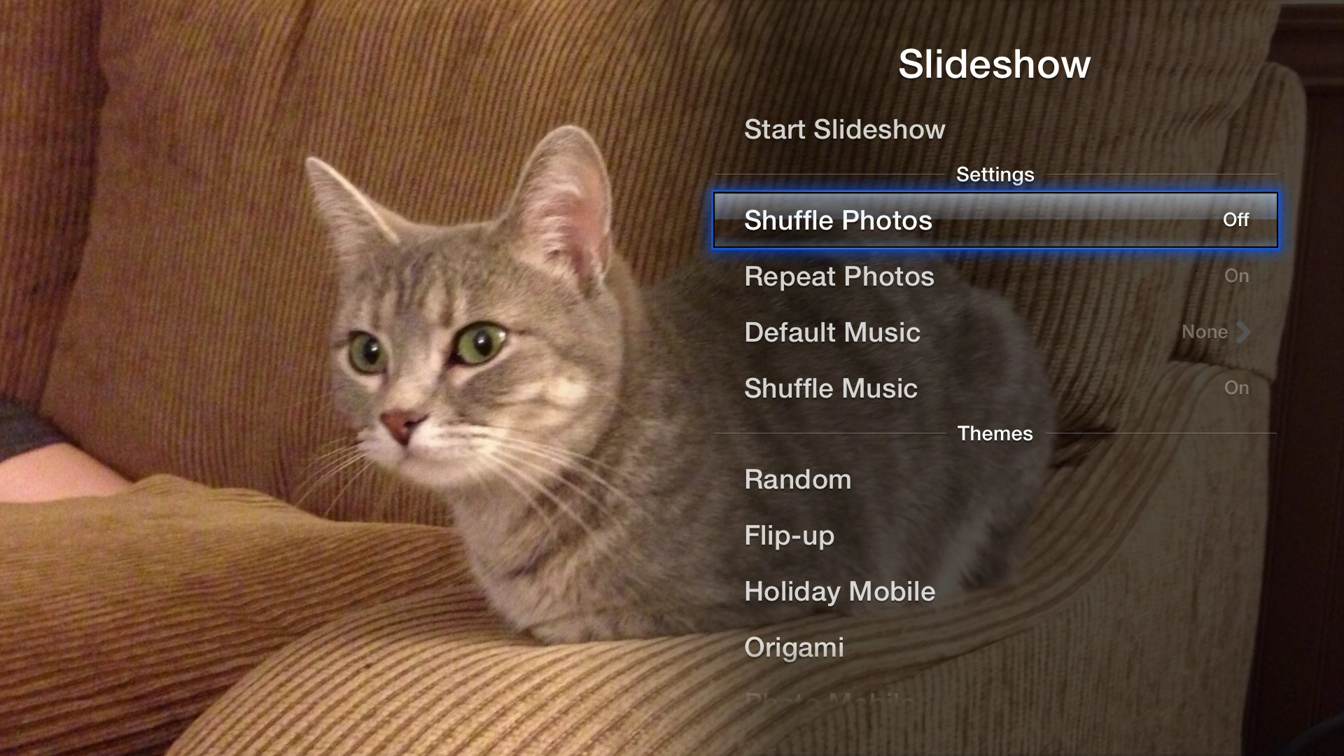 Figure 8: Select the Slideshow button in the upper-right of a gallery to set up and start a slideshow.