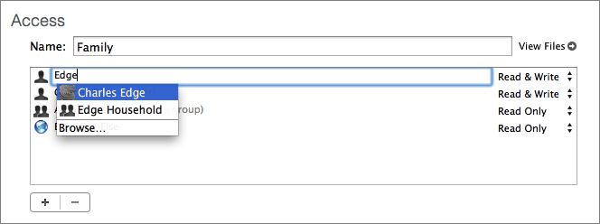 Figure 6: Click the plus button to activate a new entry in the Access panel.