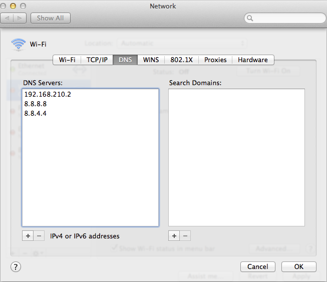 Figure 5: Configure the DNS Server settings on client computers to look to your new server.