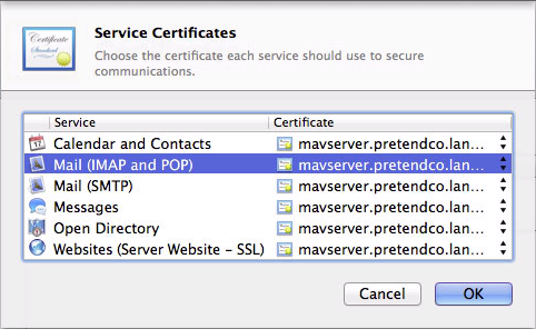 Figure 3: Make sure your self-signed certificate is selected for Mail (IMAP and POP) and Mail (SMTP).