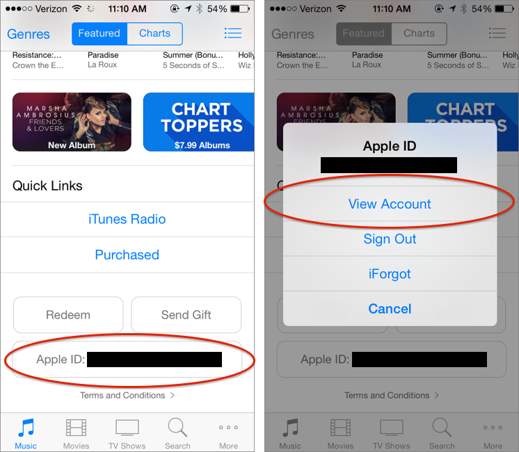 iTunes Pass: How to Buy iTunes Store Credit via Passbook - TidBITS