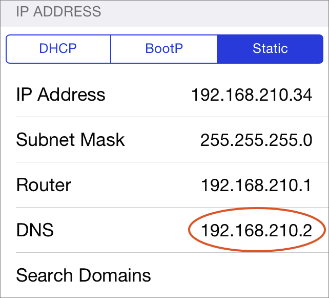Figure 7: If necessary, change the DNS setting the iOS device so it can see your server on the local network.
