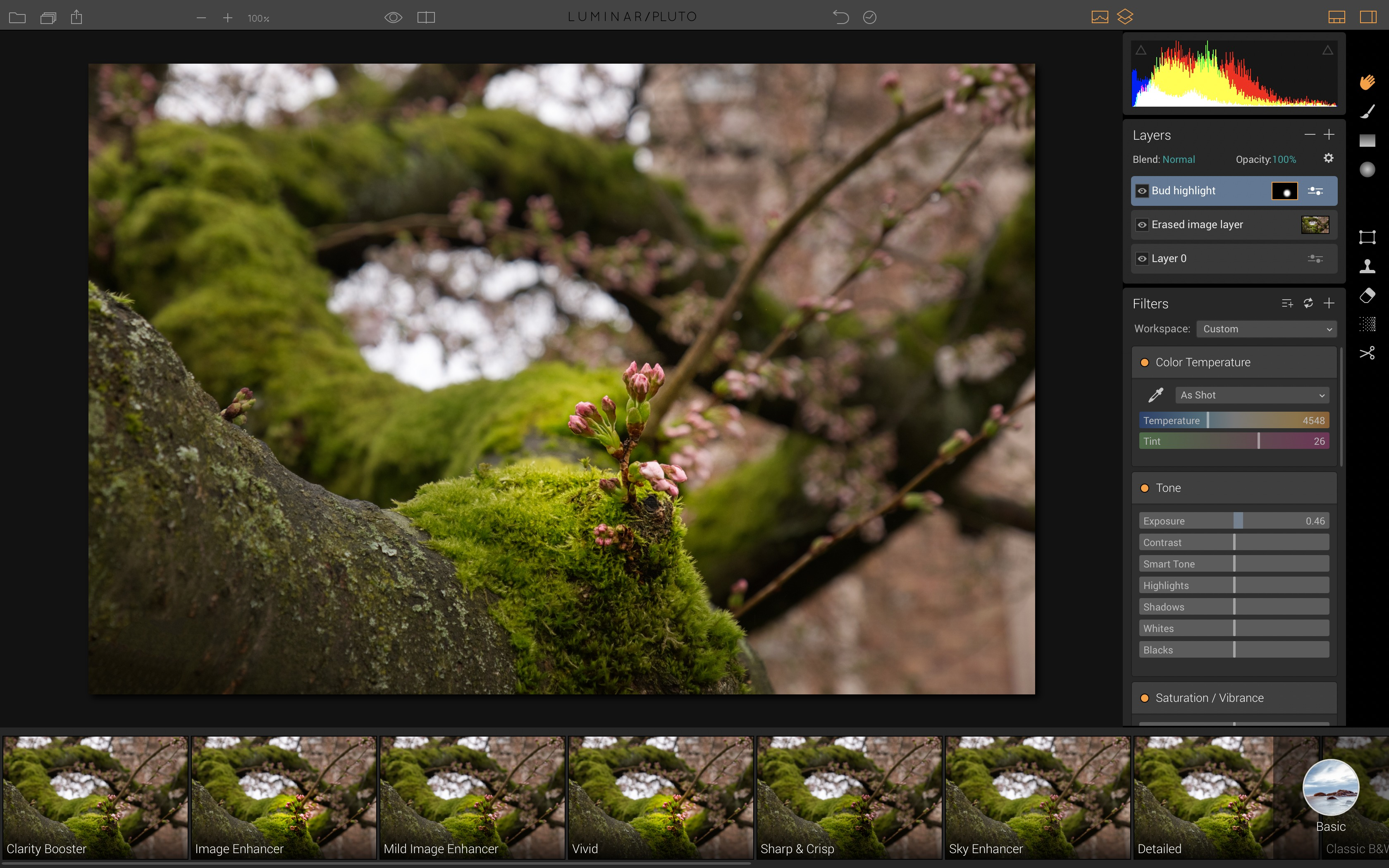 Photo Editing as One with Luminar - TidBITS