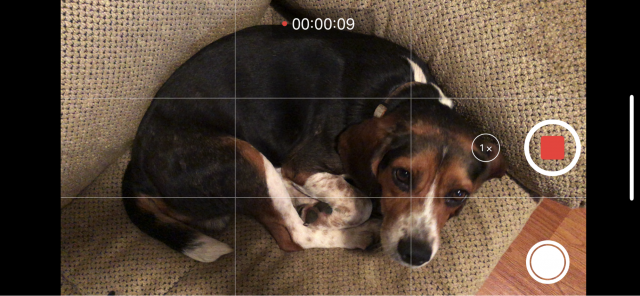 The Camera app during video recording