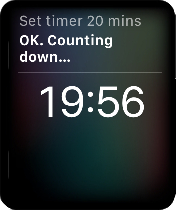 A Siri timer on the Apple Watch
