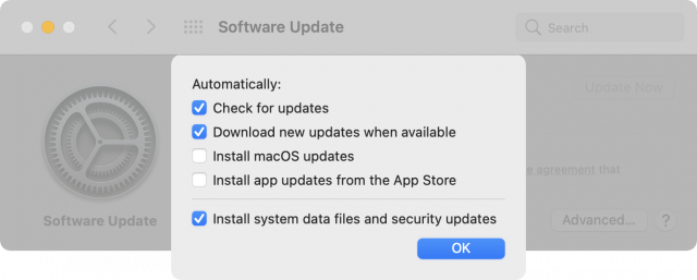 Software Update preference pane in Big Sur
