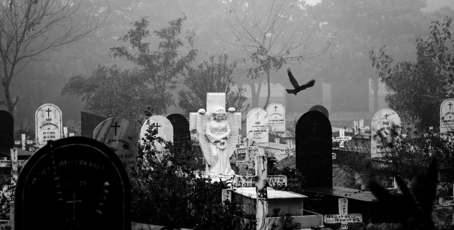 A bird flying in a graveyard.