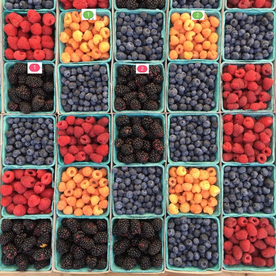 Photo of boxes of fruit, linked like text boxes