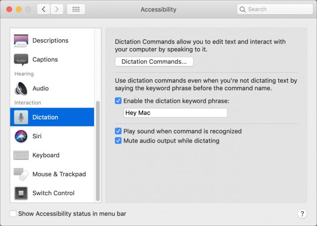 Screenshot of the Dictation screen of Accessibility