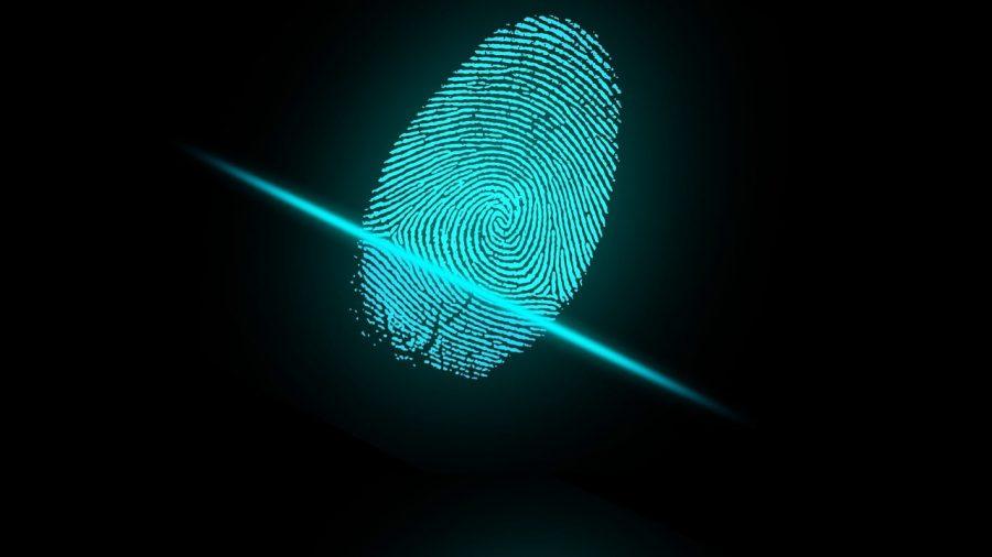 A fingerprint