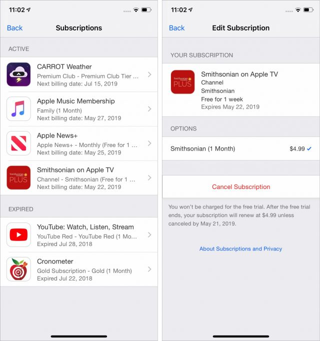 Managing subscriptions in iOS