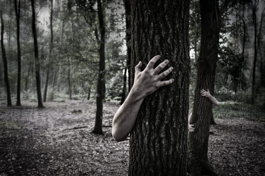 Photo of scary hands coming around trees