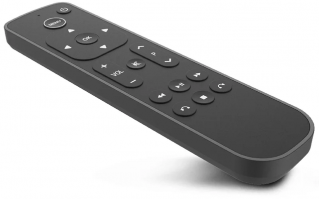 The Salt remote