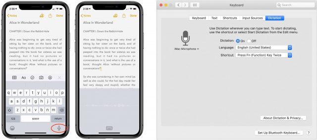 Enables dictation in iOS and macOS