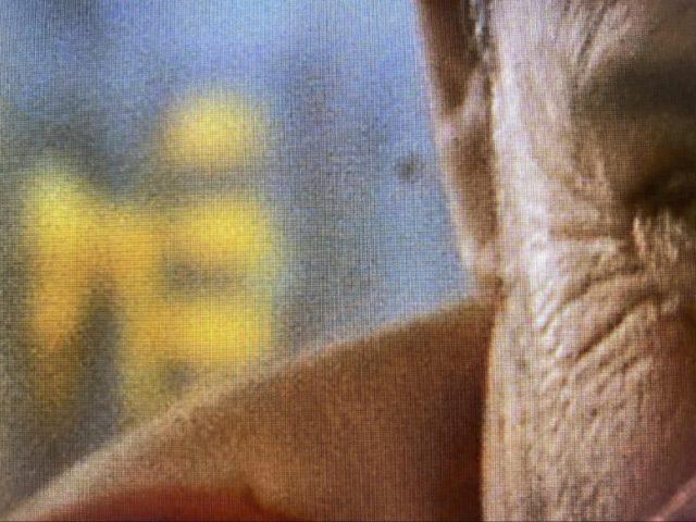 Fifth Element-korrel