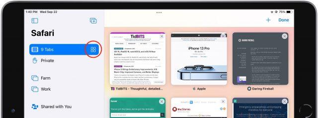 The tab switcher in Safari iPad's sidebar