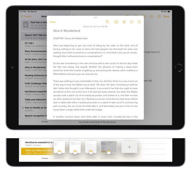 Gecentreerd venster en strip in iPadOS 15