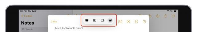 Een gecentreerd venster in het multitask-menu van iPadOS 15