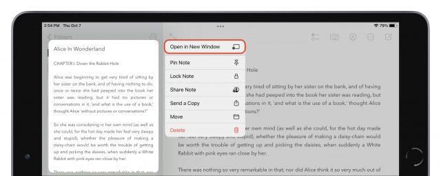 Een gecentreerd venster maken in iPadOS 15